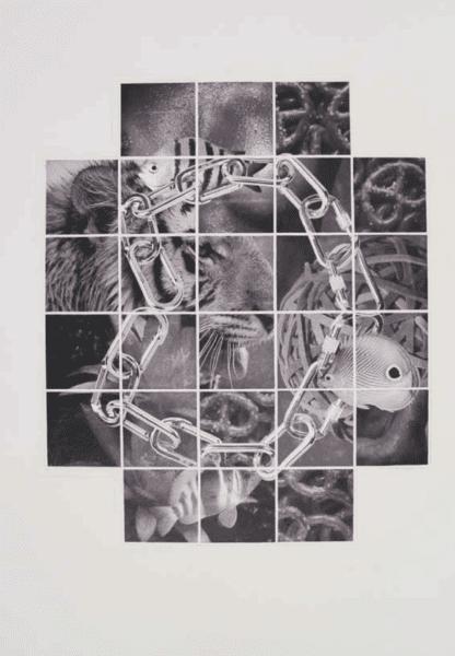 Peter Phillips Mosaik Study 3 (tiger) 2004 Collage On Handmadepaper 47x57